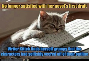 Writer Kitteh