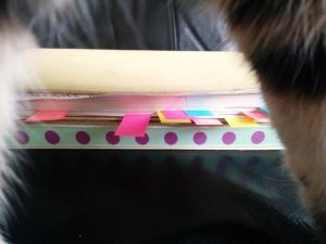 RelicsOfArZac Notebooks
